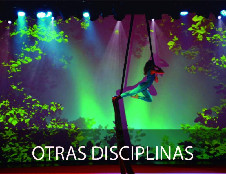Otras Disciplinas